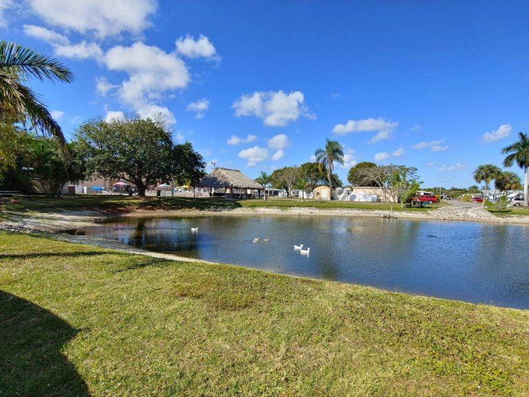 Poinsettia Park Broadstar Florida